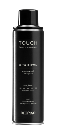ARTEGO TOUCH Up and Down Non-Aerosol Hairspray, 250ml