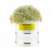 Vorschau: Friseur Produkte24, Medavita Shampoo welliges Haar